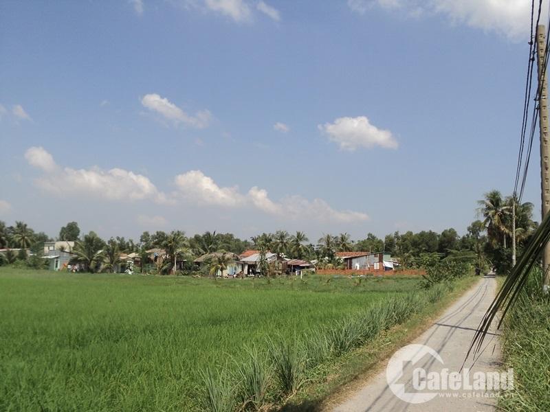 Bình Quới – Thanh Đa - Làng quê giữa phố thị sau hơn 26 năm quy hoạch. Ảnh: Nguyễn Văn