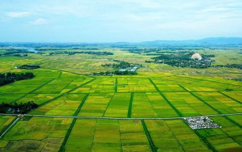 Cách Tính Giá Đất Chuẩn Theo Quy Định Của Pháp Luật Hiện Nay