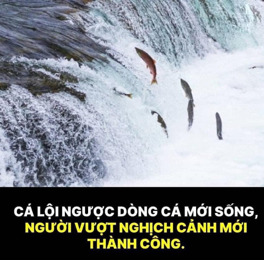 22-tu-duy-vang-giup-thay-doi-van-menh