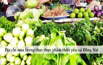 thuc-pham-thiet-yeu-dong-nai